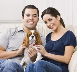 What Do You Need to Know When You Rent an Apartment with a Pet?