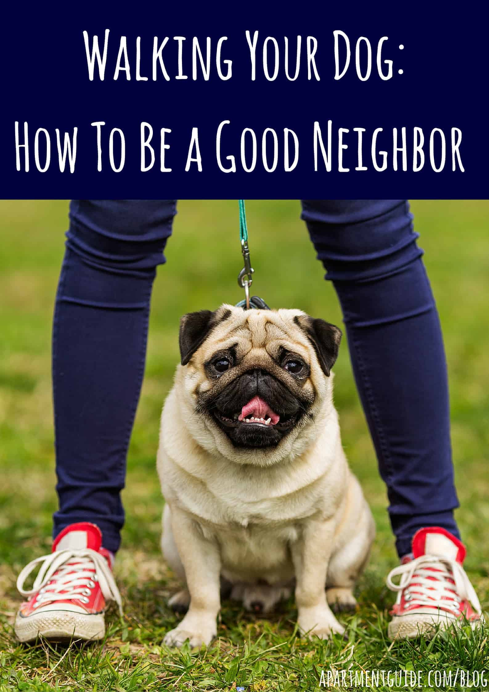 How To Walk A Dog In Your Apartment Community copy