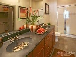 TX-Austin-The Triangle-bathroom-thumbnail