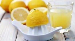 lemons 260p