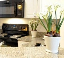 GA-Johns Creek-Aylesbury Farms-kitchen-thumbnail