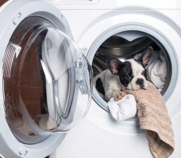 Portable Washing Machines: No Laundry Room Required
