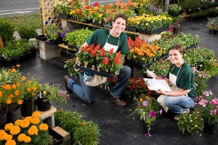 If you want to make your apartment or yard more beautiful with plants, garden stores in Indianapolis can help.