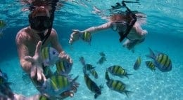 best places to snorkel in southern california