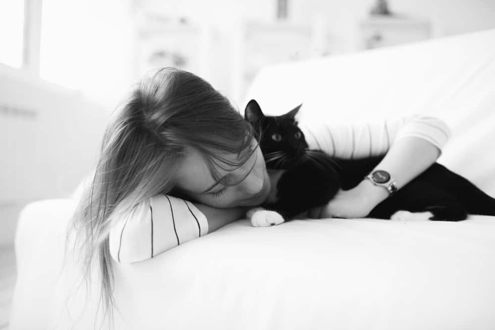 kitten-Yuliya Yafimik-edited