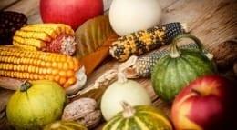 meat-free thanksgiving