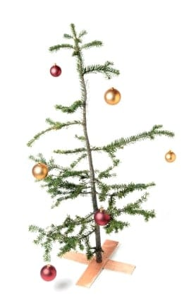 "Would you adopt this Christmas tree? Charlie Brown felt sorry for one just like it in ""A Charlie Brown Christmas."""