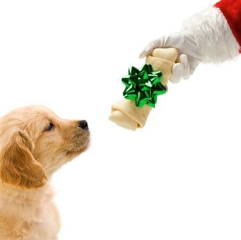 Keep your pup happy this holiday season with these gifts.