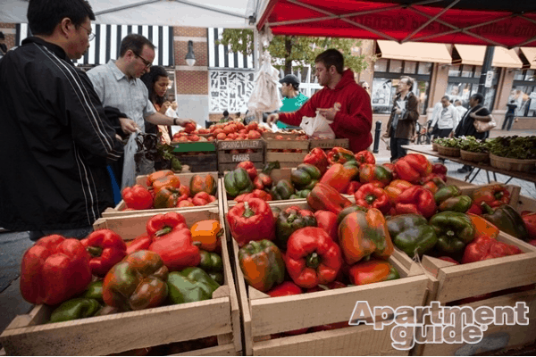 dc farmers market watermarked
