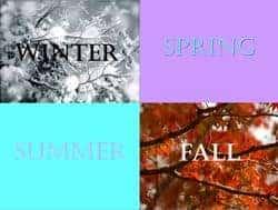 seasons-thumbnail
