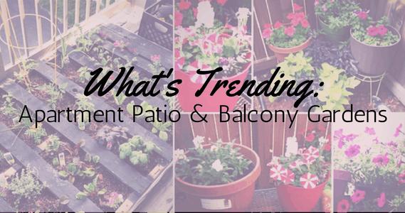 Great Whatu0027s Trending: Apartment Patio U0026 Balcony Gardens