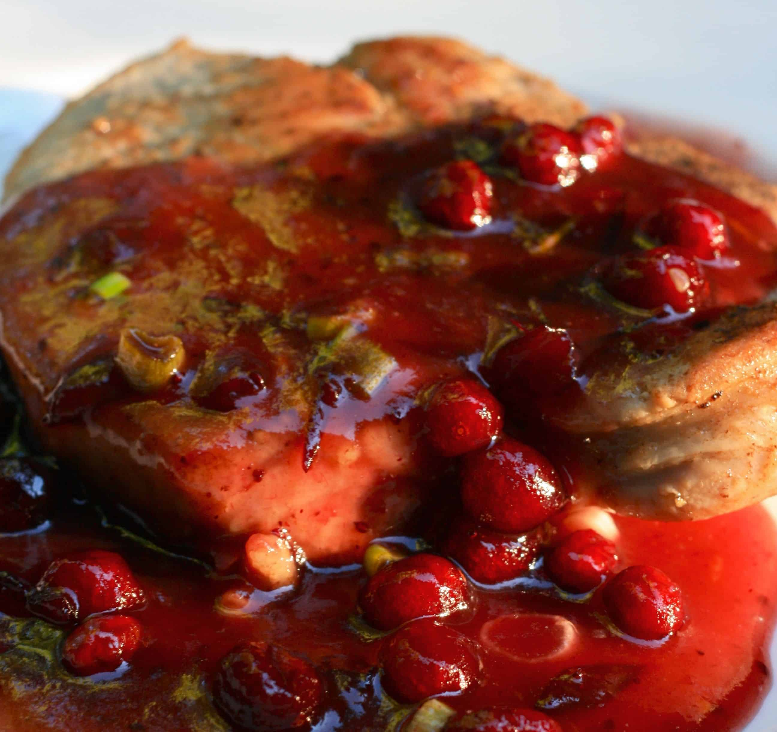 Easy Crockpot Recipes for Fall - Cranberry Pork