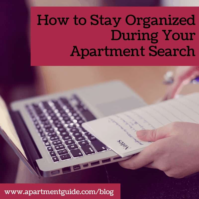How to Stay Organized During Your Apartment Search