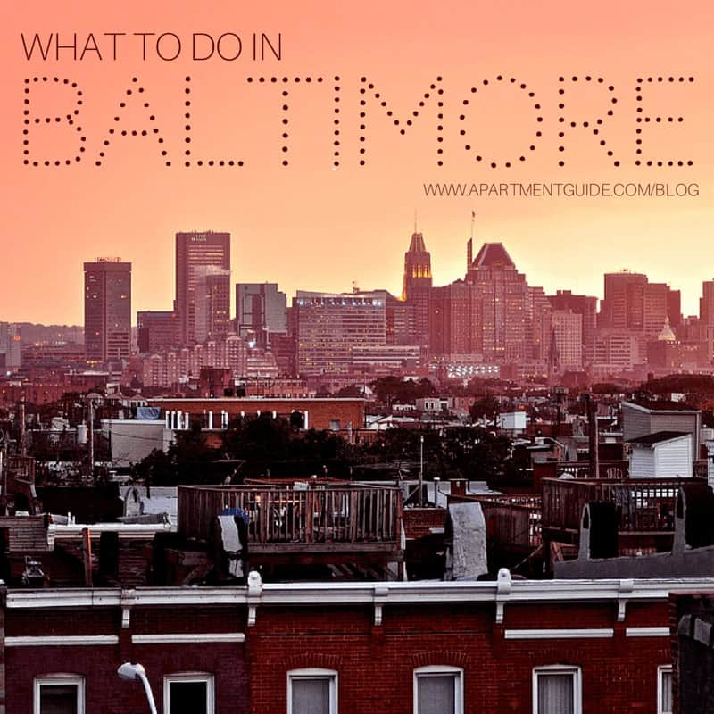 What To Do In Baltimore Apartmentguide Com