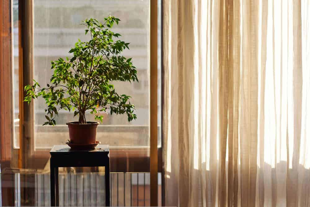 Energy Saving Tips That Won't Force You to Sacrifice Comfort- Hang Light Curtains