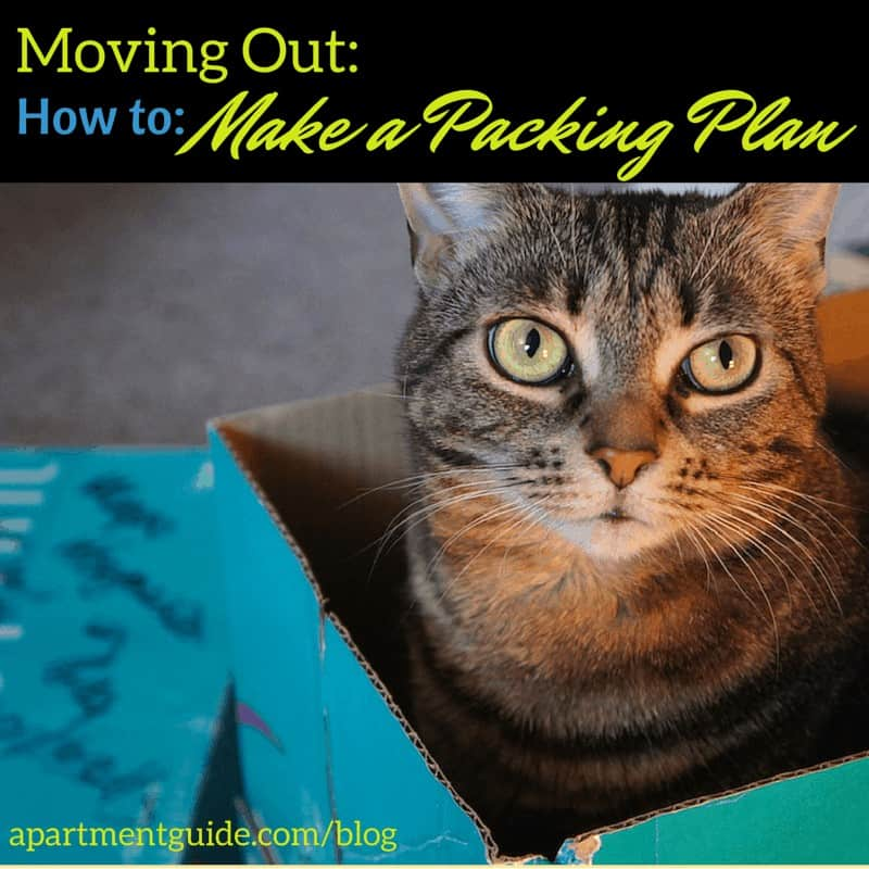 Moving Out How to Make a Packing Plan