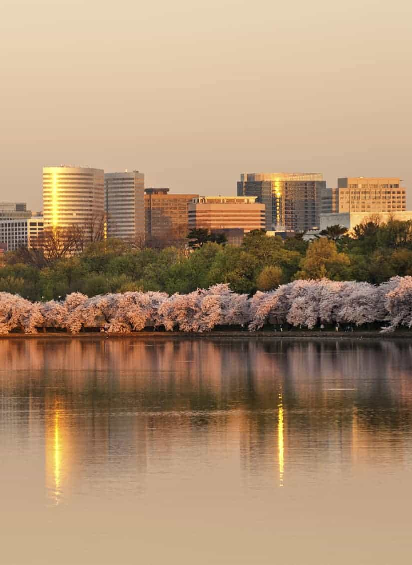 Arlington, Virginia Neighborhoods A Guide - Ballston