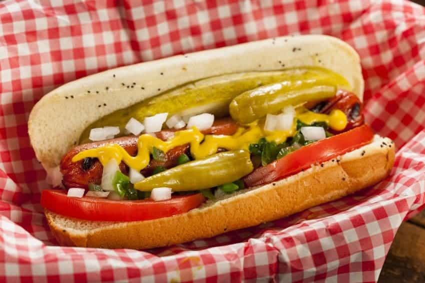 Dog Food Chicago