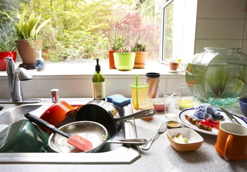 How To Clean Kitchen Appliances | Apartmentguide.Com Blog