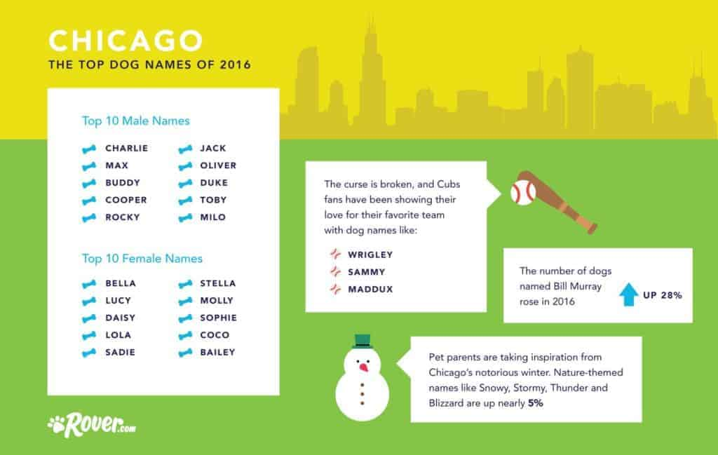 top dog names in chicago