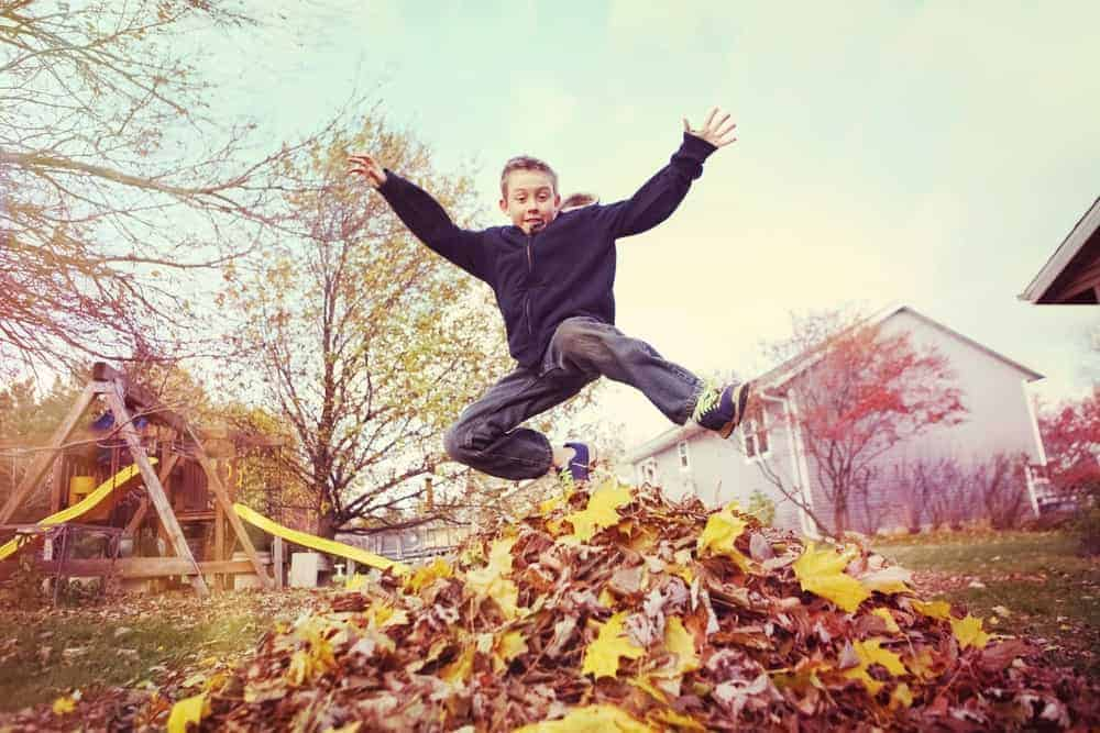 kid jumping in leaves