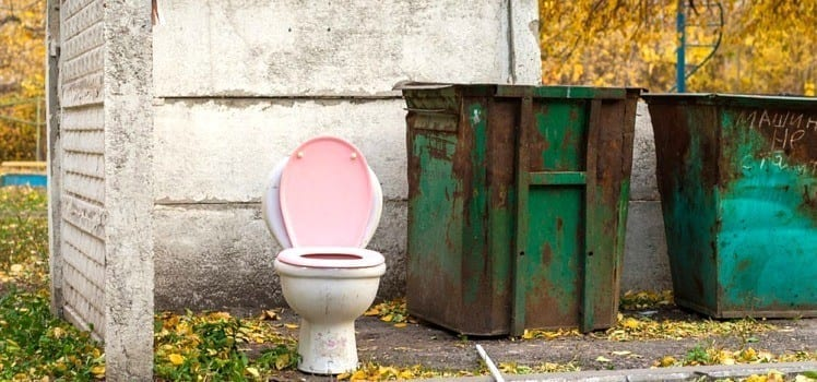 pink toilet sitting by dumpster