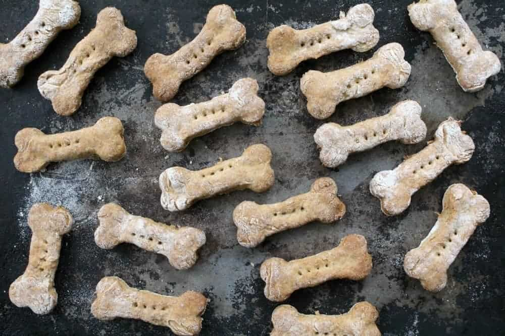 turkey bone dog treats