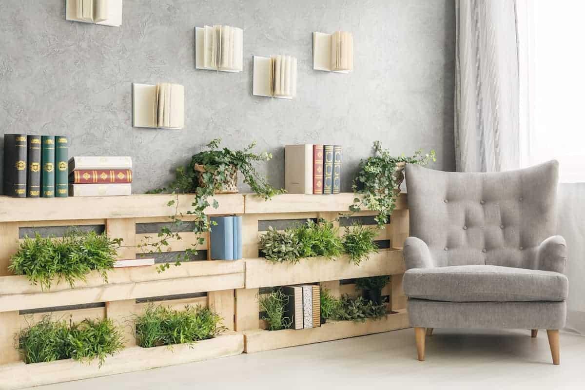 plants on bookshelf
