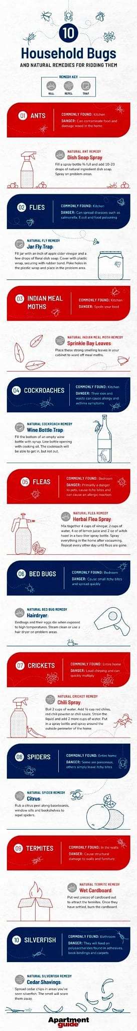 infographic of types of household bugs and remedies