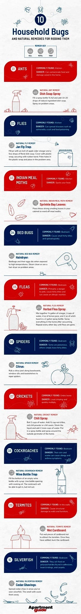 10 Household Bugs And Natural Remedies For Ridding Them Apartmentguide Com