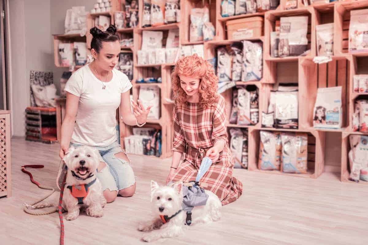 Two female friends with their dogs sitting together at a pet store