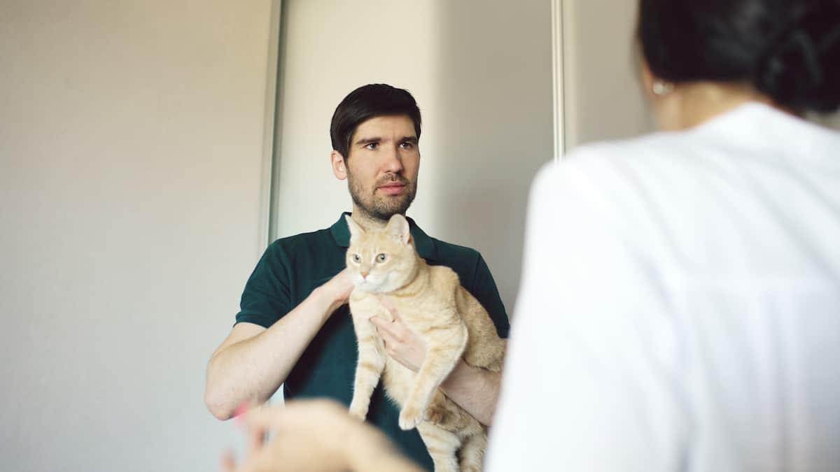 man talking to vet