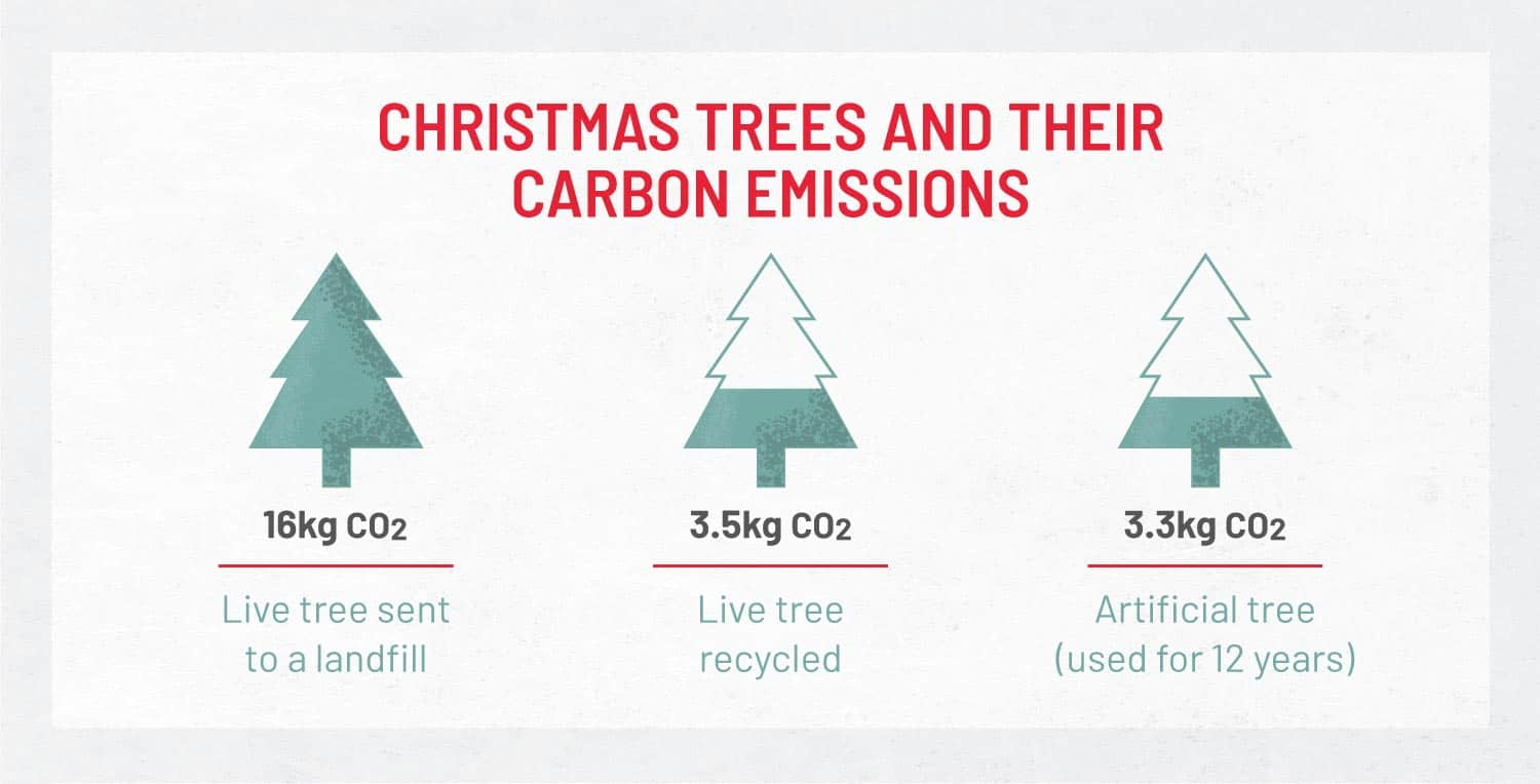 graphic that shows the carbon emissions of trees