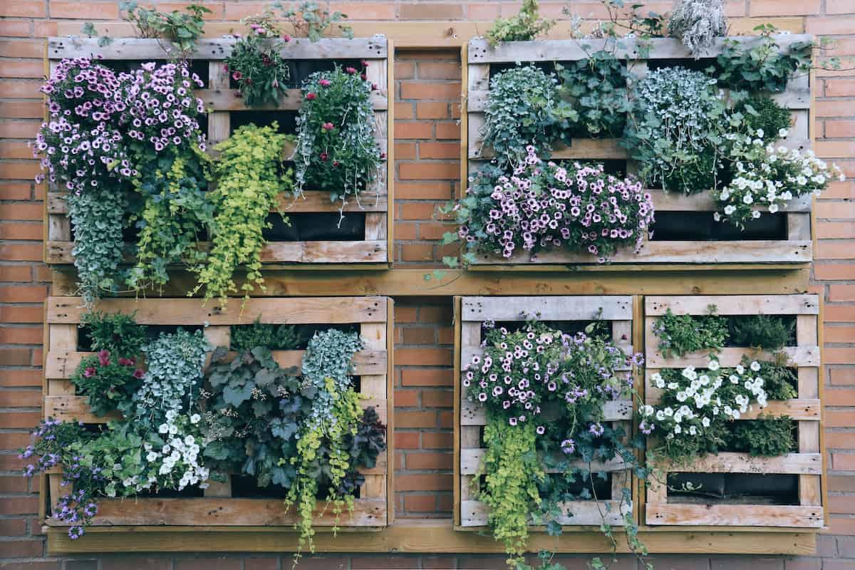 vertical garden in pallets
