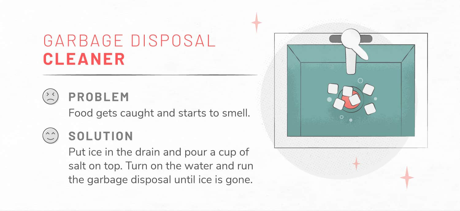 illustration of garbage disposal being cleaned with ice