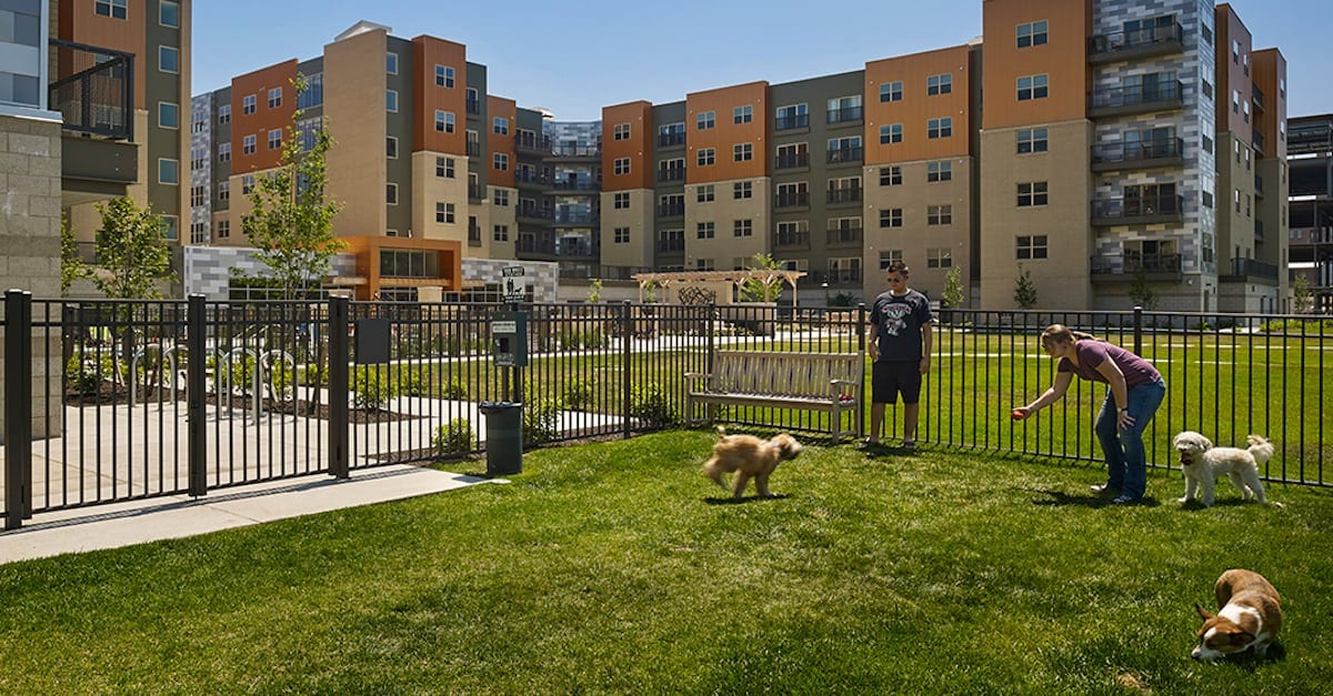 Dog park at The Yards in Pittsburgh