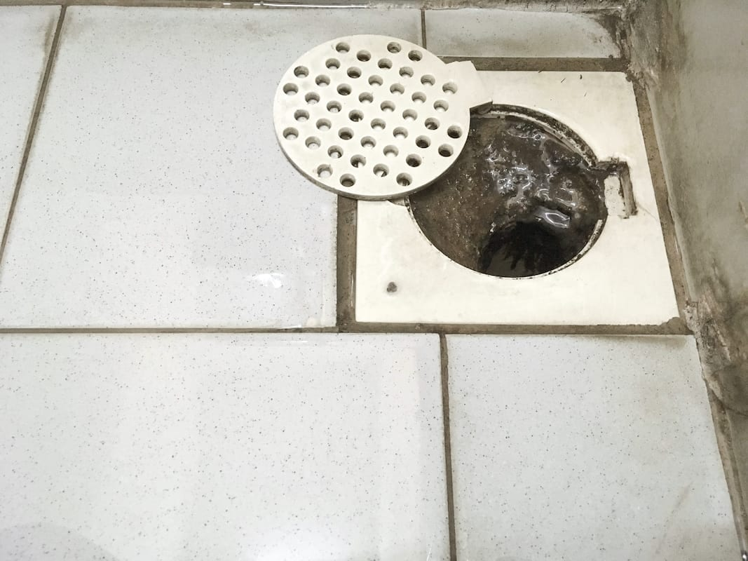 dirty shower drain