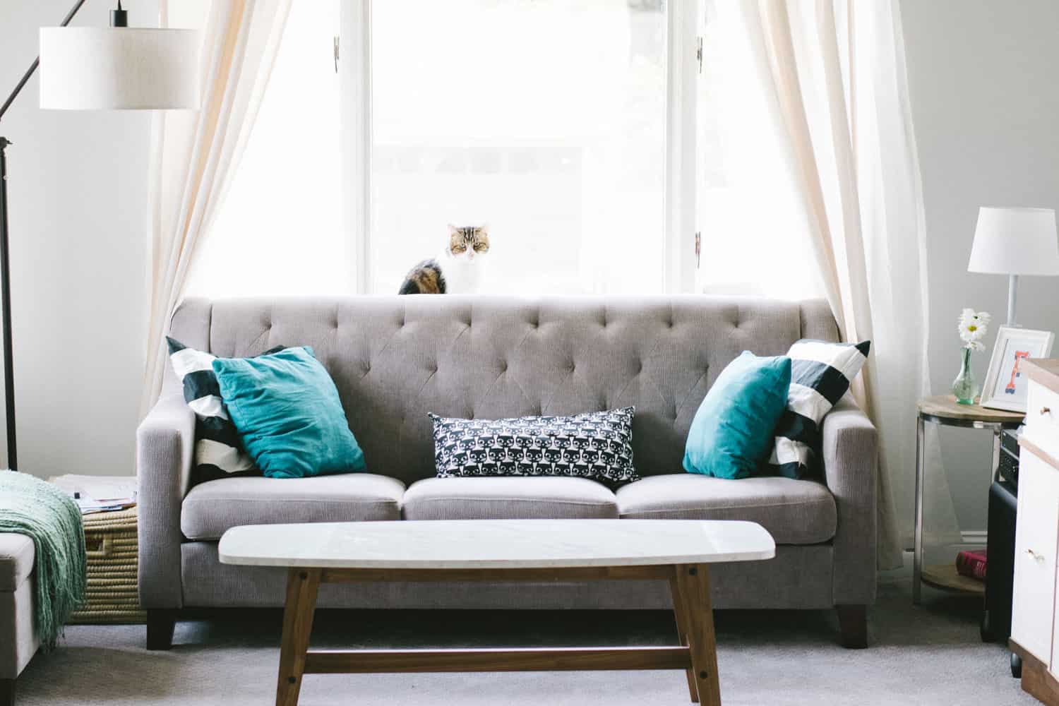 photo of clean living room with presentable couch