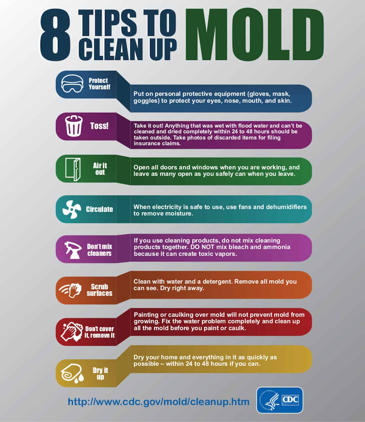 Chart outlining how to clean mold from your home.