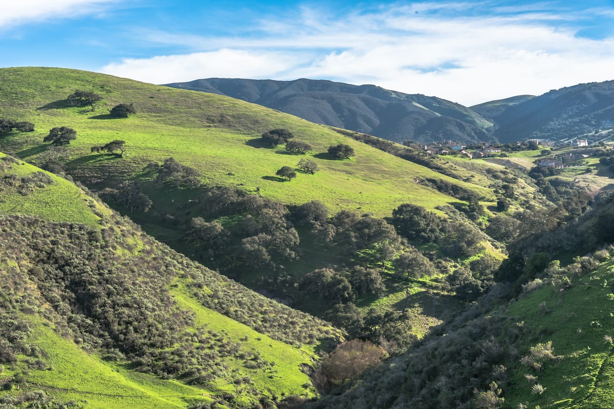salinas california