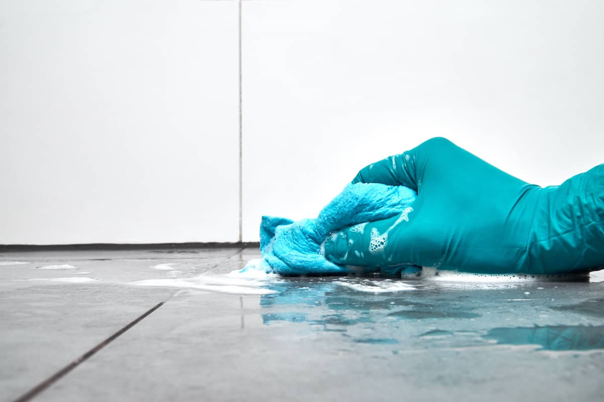 scrubbing with borax