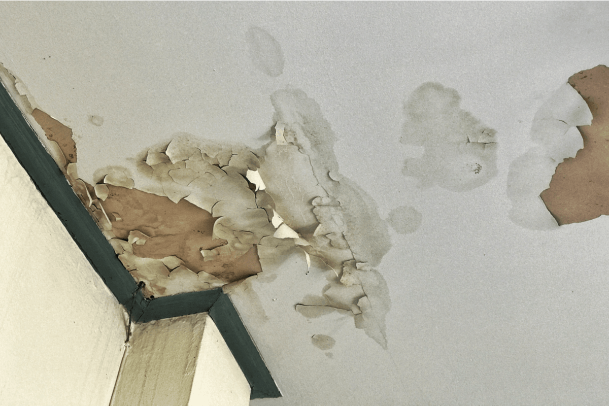 Water damage on the ceiling.
