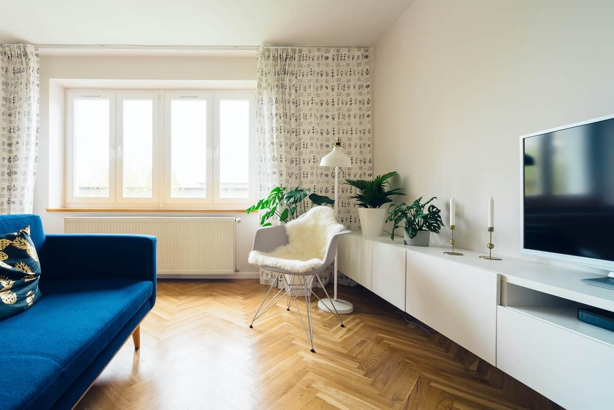 Minimalist apartment with a blue couch and hardwood floors.