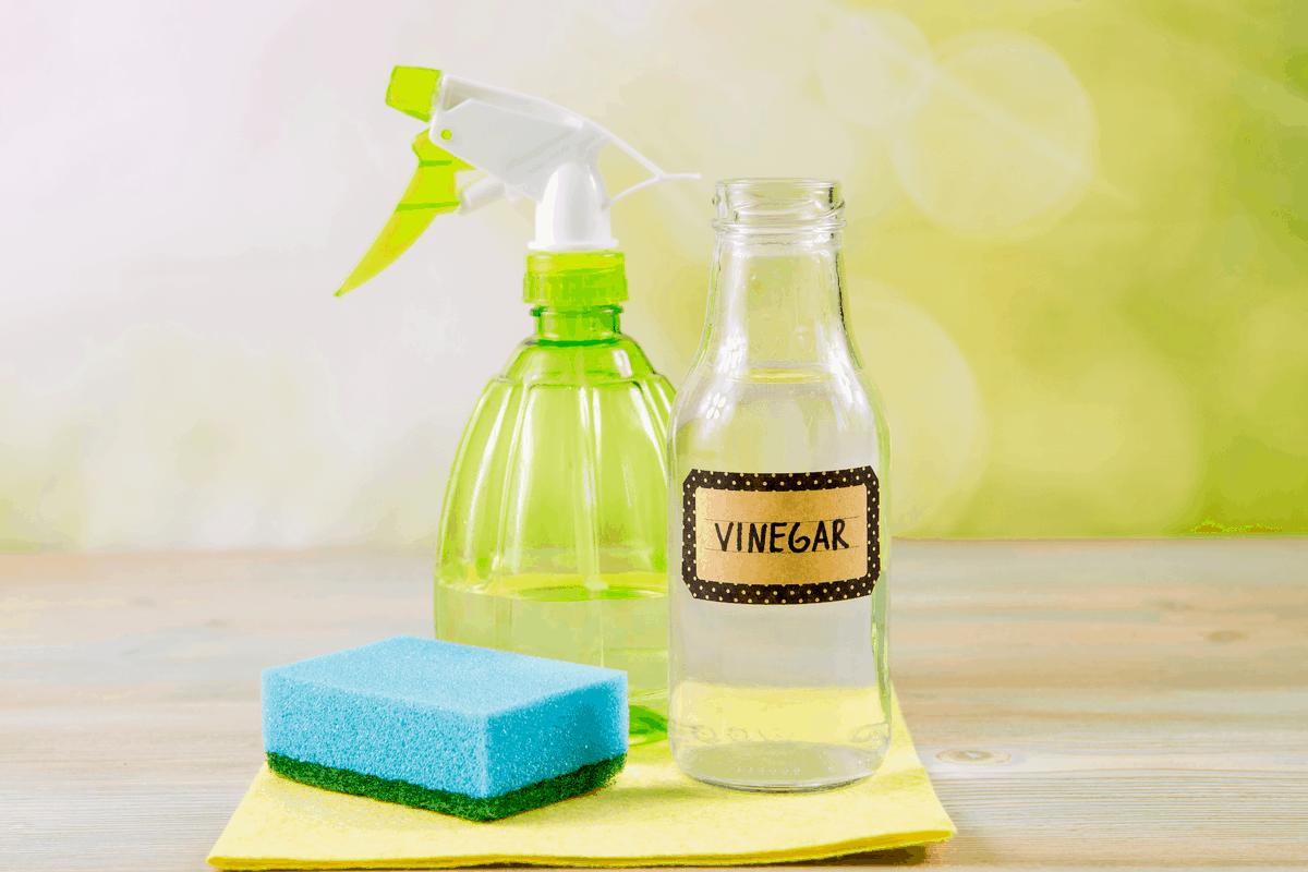 Vinegar, water and a sponge.